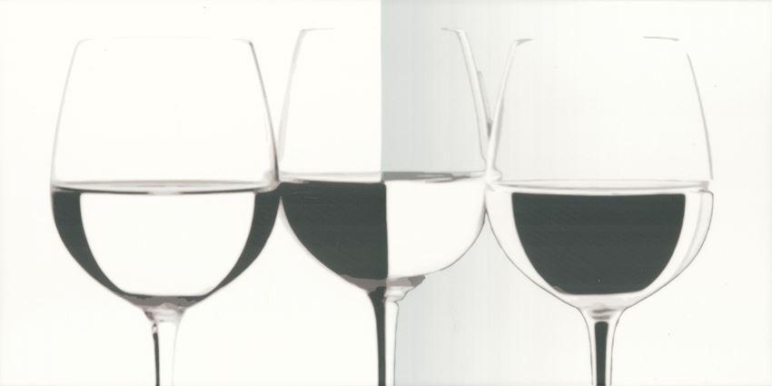 Dekoracja ścienna 30x60 cm Paradyż Vivida Bianco inserto Vine
