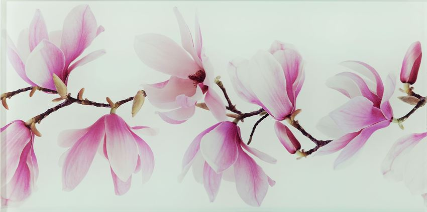 Dekor ścienny 44,8x22,3 cm Domino Tango flower