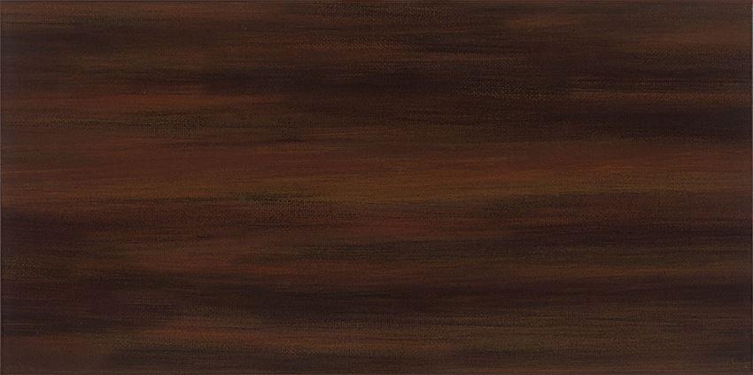 Płytka ścienna 44,8x22,3 cm Domino Aceria brąz