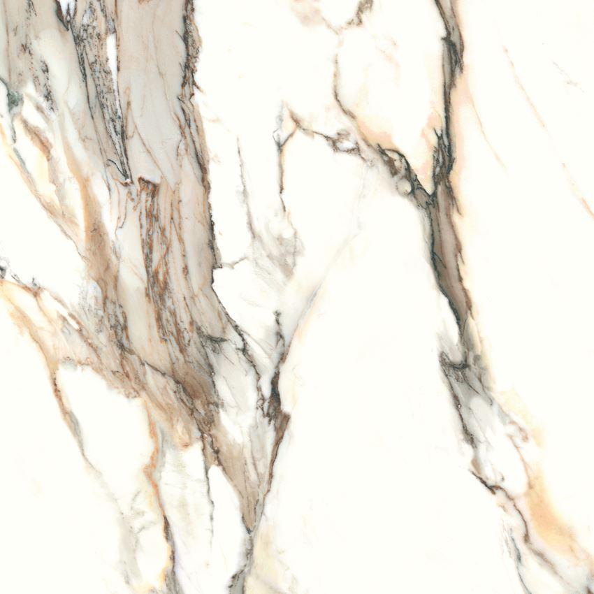Płytka ścienno-podłogowa Cerrad Calacatta gold 120x120