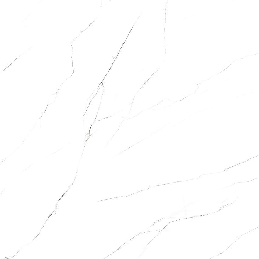 carrara classic lappato (3).jpg