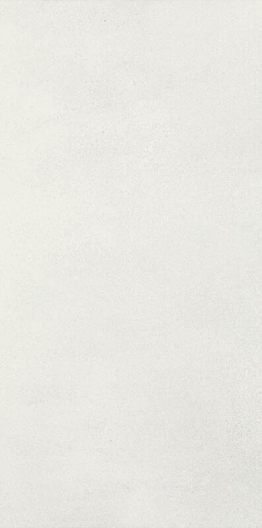Płytka ścienna 29,5x59,5 cm Paradyż Taiga Silver Ściana Rekt.