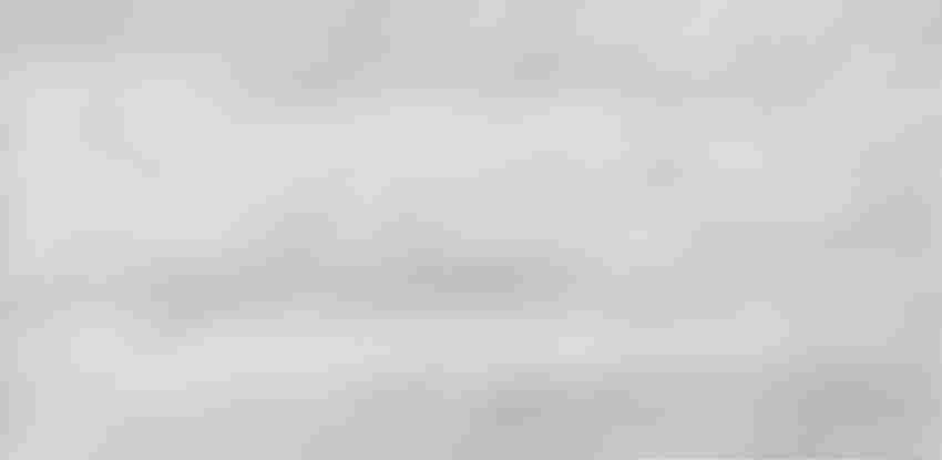 Płytka uniwersalna 29x59,3 cm Opoczno Floorwood White Lappato
