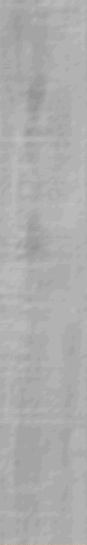 Płytka podłogowa drewnopodobna Cerrad Nickwood Beige 20x120