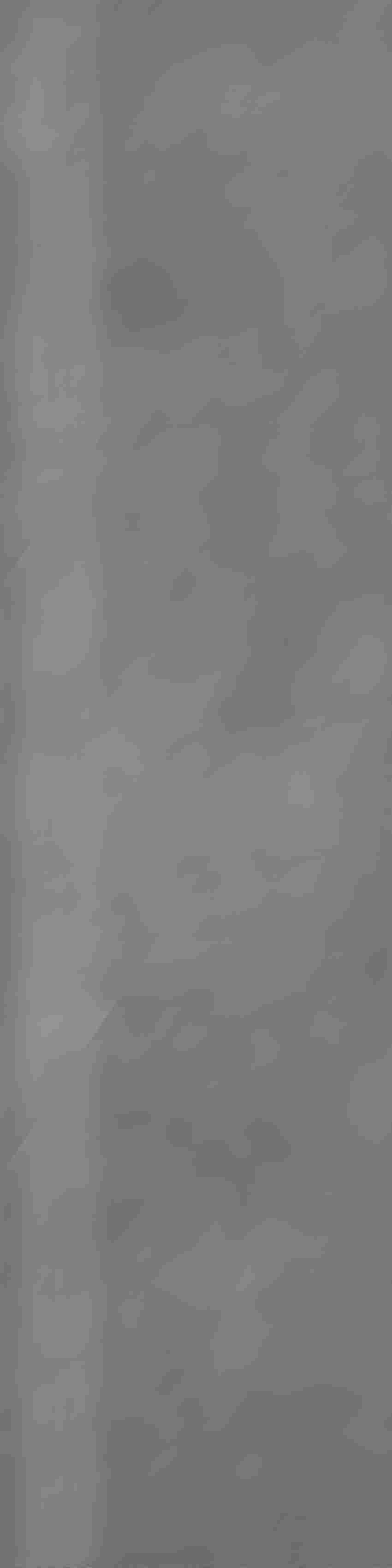 Stopnica 29,7x119,7 cm Nowa Gala Neutro NU 13