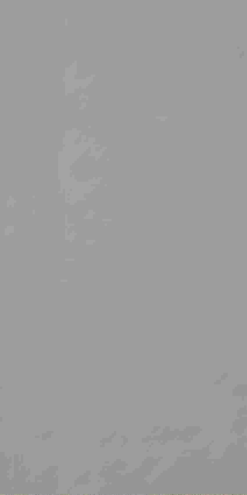 Płytka stopnicowa 29,8x59,8 cm Paradyż Solid Silver Stopnica Prosta Mat