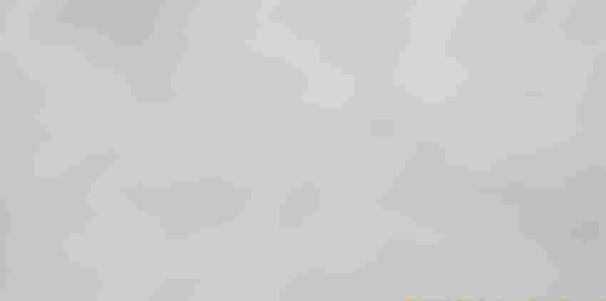 Płytka uniwersalna 29,7x59,8 cm Opoczno Karoo Beige